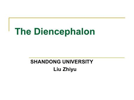 The Diencephalon SHANDONG UNIVERSITY Liu Zhiyu. Position of Diencephalon Position: Lies between midbrain and cerebrum, almost entirely surrounded by cerebral.