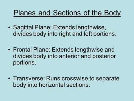 Planes and Sections of the Body Sagittal Plane: Extends lengthwise, divides body into right and left portions. Frontal Plane: Extends lengthwise and divides.