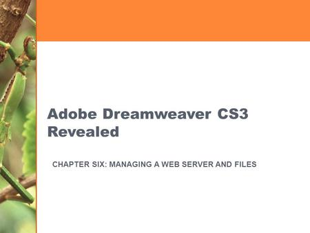 Adobe Dreamweaver CS3 Revealed CHAPTER SIX: MANAGING A WEB SERVER AND FILES.