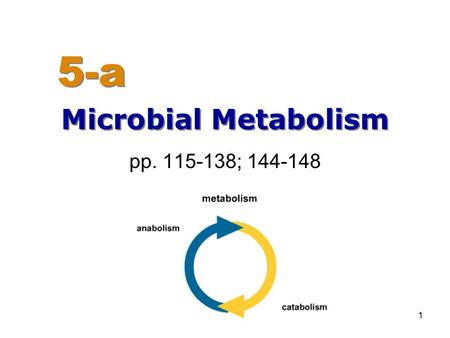 1 pp. 115-138; 144-148 Microbial Metabolism 5-a. 2 Chapter 5 Overview Metabolism Enzymes Common energy pathways used by microbes –Fermentation –Aerobic.