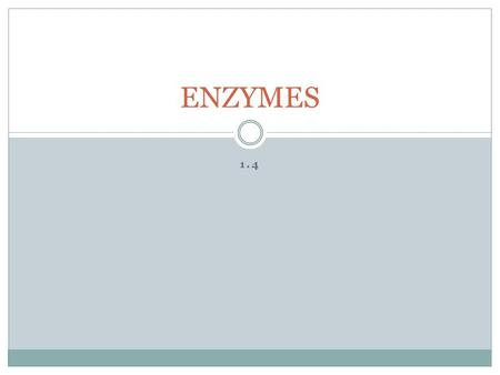 1.4 ENZYMES. Enzyme are _________________ catalysts.  Either tertiary or quaternary.  Names ususually end in 'ase.' CATALYST: substance that _____________.