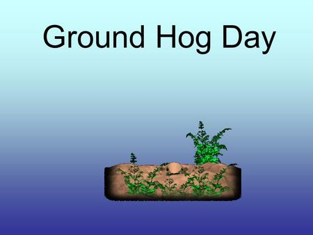 Ground Hog Day. What is a Groundhog A groundhog, is also known as a woodchuck a member of the squirrel family. Shape- –Color: black-footed, –reddish-brown.