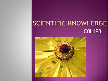 C0L1P3. How can I distinguish the similarities and differences of scientific theory and scientific law?