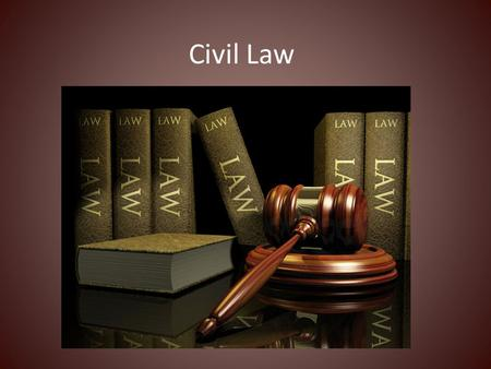 Civil Law. Law that governs private property, contracts and disputes involving individuals and businesses.