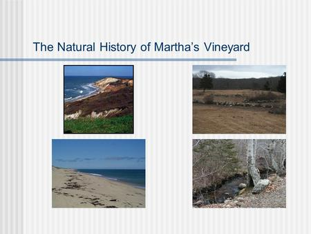 The Natural History of Martha's Vineyard. Questions to answer: How old is the Vineyard? How did it form? How did it get the shape and unique features?