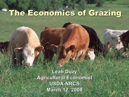 The Economics of Grazing Leah Duzy Agricultural Economist USDA-NRCS March 12, 2008.
