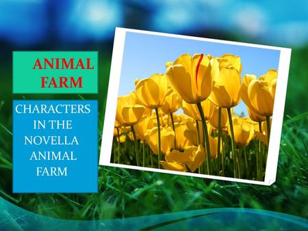 animal farm essay on utopia