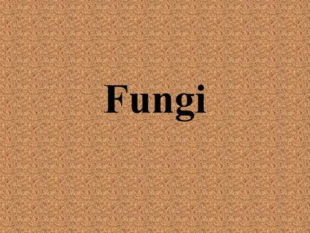 Fungi. The Kingdom Fungi Fungi are eukaryotic heterotrophs that have cell walls –Cell walls made of chitin—complex carbohydrate found in insects' exoskeletons.