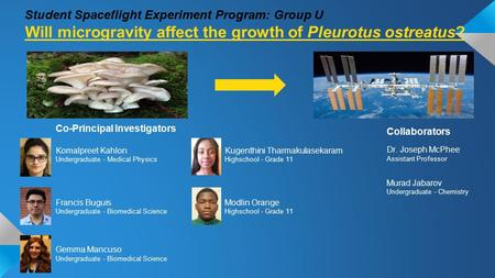 Student Spaceflight Experiment Program: Group U Will microgravity affect the growth of Pleurotus ostreatus? Co-Principal Investigators Komalpreet Kahlon.
