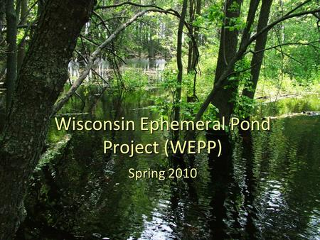 Wisconsin Ephemeral Pond Project (WEPP) Spring 2010.