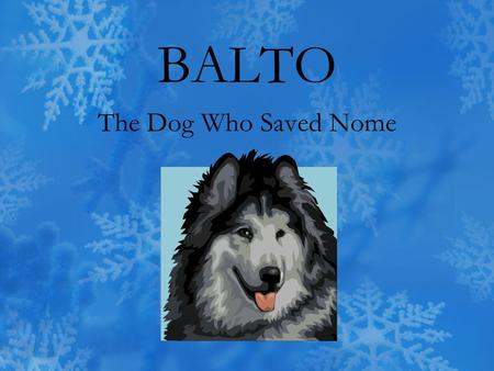 BALTO The Dog Who Saved Nome. The __________ were very thin and sharp. a.temperature b.splinters c.trail d.guided.