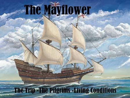 The Mayflower The Trip -The Pilgrims -Living Conditions.