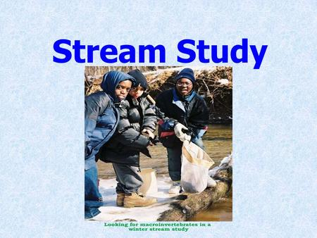 Stream Study. Agenda The Water Cycle Water, Water, Everywhere What is a Riparian Buffer The Question: Is our local stream healthy? The Methods The Analysis.