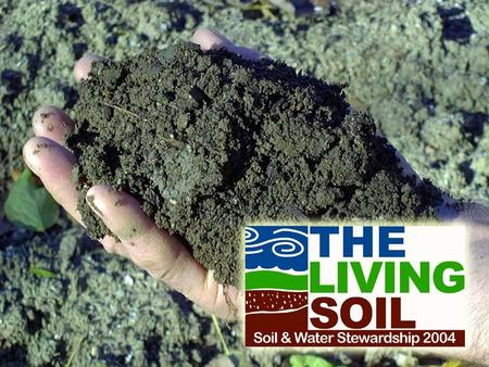 Soil is Pieces of rocks and minerals (such as clay, silt, sand and gravel) Decayed parts of Living things Water Air.