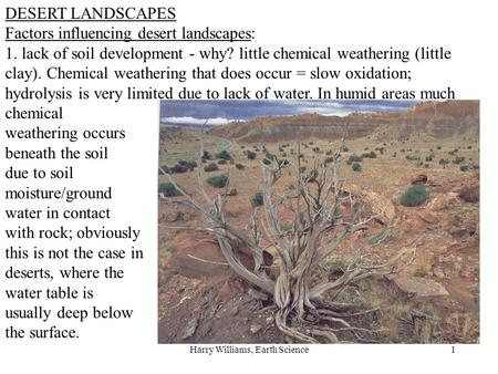 Harry Williams, Earth Science1 DESERT LANDSCAPES Factors influencing desert landscapes: 1. lack of soil development - why? little chemical weathering (little.