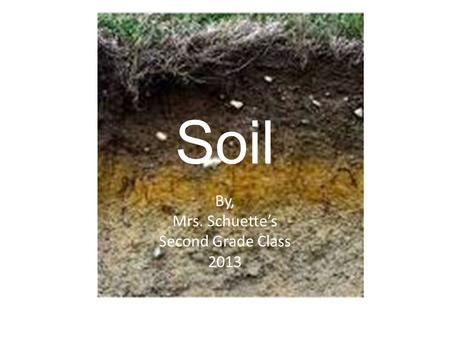 Soil By, Mrs. Schuette's Second Grade Class 2013.