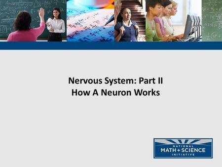 Nervous System: Part II How A Neuron Works. Animals have nervous systems that detect external and internal signals, transmit and integrate information,