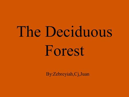 The Deciduous Forest By:Zebreyiah,Cj,Juan. The deciduous forest is located in the eastern half of north America. We live in a deciduous forest. Deciduous.