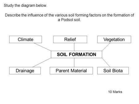 SOIL FORMATION ClimateReliefVegetation DrainageParent MaterialSoil Biota Study the diagram below. Describe the influence of the various soil forming factors.