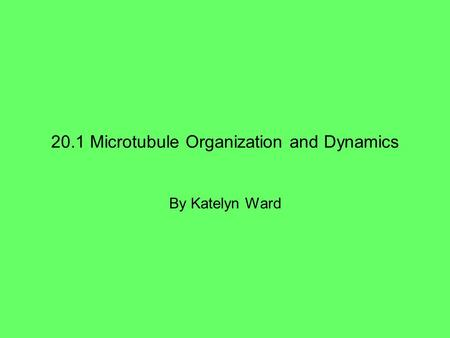 20.1 Microtubule Organization and Dynamics By Katelyn Ward.