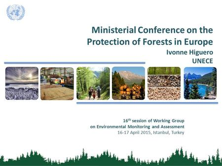 Ministerial Conference on the Protection of Forests in Europe Ivonne Higuero UNECE 16 th session of Working Group on Environmental Monitoring and Assessment.