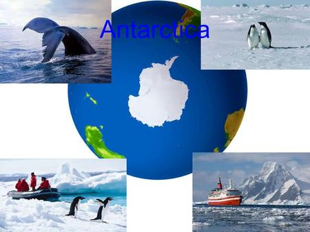 Antarctica. VOCAB - Overview Pancake Ice Pack Ice Glaciers Ice Shelf Crevasse Ice Sheet Calving Ice Core Katabatic Winds Research Station Remote Sensing.