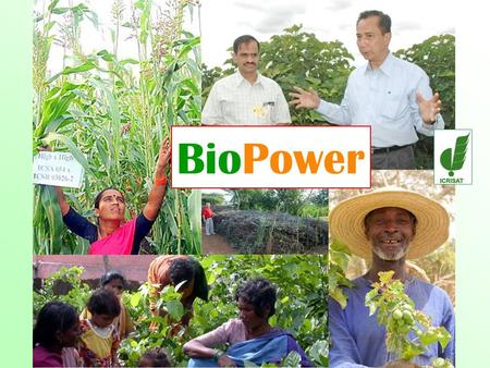 BioPower. BioPower = Em power the dryland poor to benefit from the bio -energy revolution.
