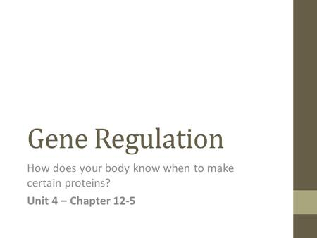 Gene Regulation How does your body know when to make certain proteins? Unit 4 – Chapter 12-5.