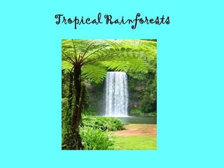 Tropical Rainforests. Tropical Rainforests: Location Tropical rainforests are located equator. Fifty seven percent of all tropical rainforests are found.