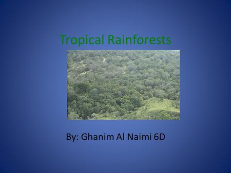 Tropical Rainforests By: Ghanim Al Naimi 6D. What is the Tropical Rainforest? Tropical rainforests are located around the equator from the Tropic of Cancer.