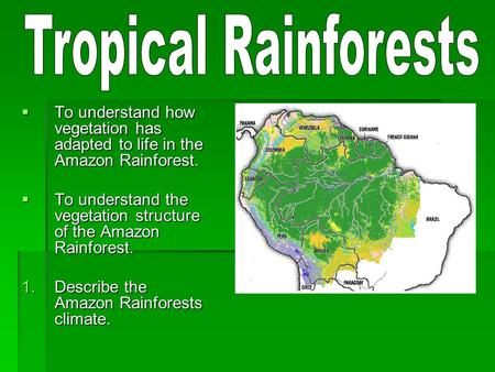  To understand how vegetation has adapted to life in the Amazon Rainforest.  To understand the vegetation structure of the Amazon Rainforest. 1.Describe.