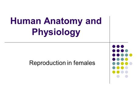 Human Anatomy and Physiology Reproduction in females.