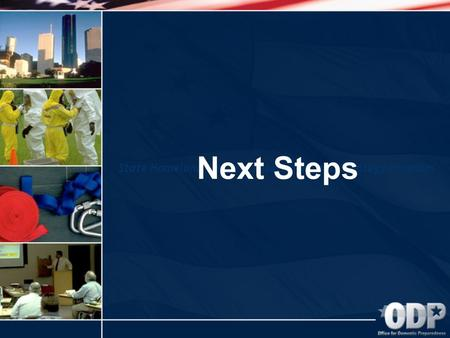 State Homeland Security Assessment and Strategy Program Next Steps.
