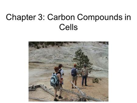Chapter 3: Carbon Compounds in Cells. I. Organic Chemistry A. What is organic? 1.Made by Living Things (organisms)…but then Stanley Miller's experiment.