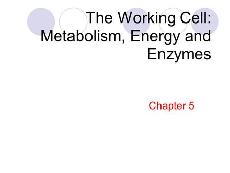 The Working Cell: Metabolism, Energy and Enzymes Chapter 5.