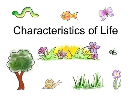 "Characteristics of Life. Biology Biology is the study of life. A biologist seeks to understand the living world. ""Bio"" = life ""ology"" = study of."