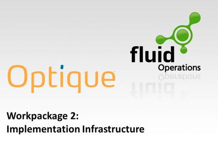 Workpackage 2: Implementation Infrastructure. WP2: Objectives Main Objective of WP2: Integrated Optique Platform Main Objective of WP2: Integrated Optique.