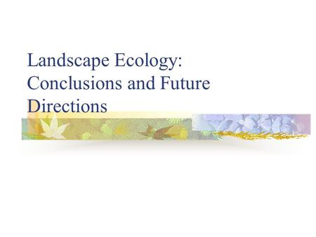 Landscape Ecology: Conclusions and Future Directions.