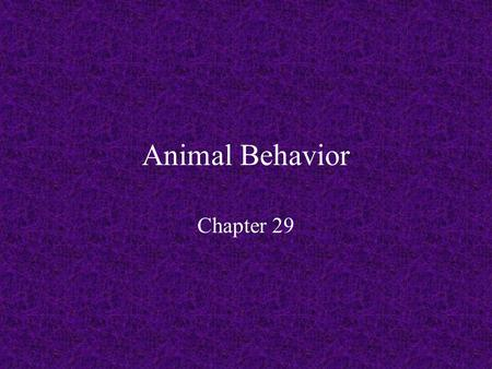 Animal Behavior Chapter 29. What is Behavior?? Behavior – observable and coordinated responses to environmental stimuli Genetic or Learned or Both???
