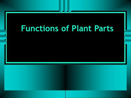 Functions of Plant Parts. Functions of Roots: 1. To take in oxygen during respiration. 2. To give off carbon dioxide during respiration.