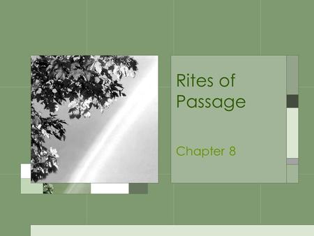 Rites of Passage Chapter 8. Pubertal Changes What is puberty?