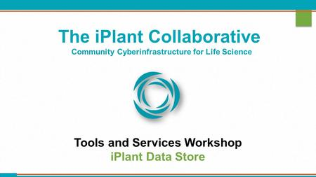 The iPlant Collaborative Community Cyberinfrastructure for Life Science Tools and Services Workshop iPlant Data Store.