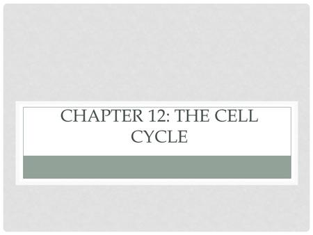 CHAPTER 12: THE CELL CYCLE. WHAT YOU MUST KNOW: The structure of the duplicated chromosome. The cell cycle and stages of mitosis. The role of kinases.