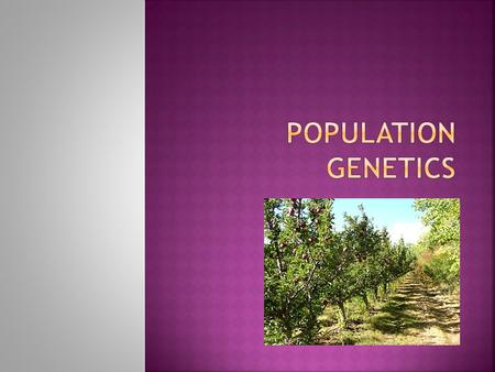  The science of genetic change in populations.  Population- interbreeding single-species group  individuals of the same species, living in the same.