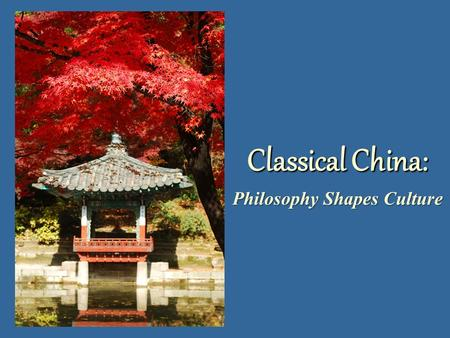 Philosophy Shapes Culture