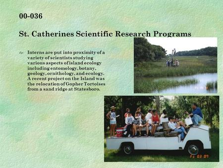00-036 St. Catherines Scientific Research Programs  Interns are put into proximity of a variety of scientists studying various aspects of island ecology.