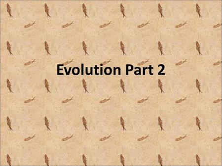 Evolution Part 2. Vocabulary Adaptive value– the value to the population of an adaptation Common Descent – organisms have a common ancestor.