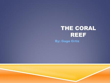 THE CORAL REEF By: Gage Ortiz. LOCATION OF THE BIOME  Coral reefs are located in tropical oceans near the equator  They are mainly in the red sea and.