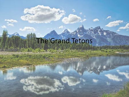 The Grand Tetons By: Tommy Davis. What year did the Grand Tetons become a park and why The Grand Tetons become a park in 1929,a coordinating commission.