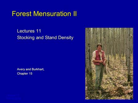 Lecture 11 FORE 3218 Forest Mensuration II Lectures 11 Stocking and Stand Density Avery and Burkhart, Chapter 15.